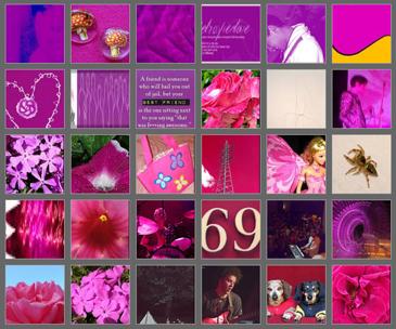 Fotos que contienen un 50 por ciento de fucsia