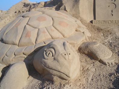 FIESA: Festival de esculturas de arena en Algarve. Tortuga
