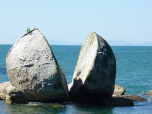 Split Apple Paddle (Abel Tasman)